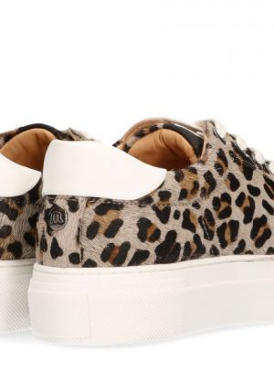 Ted Leopard